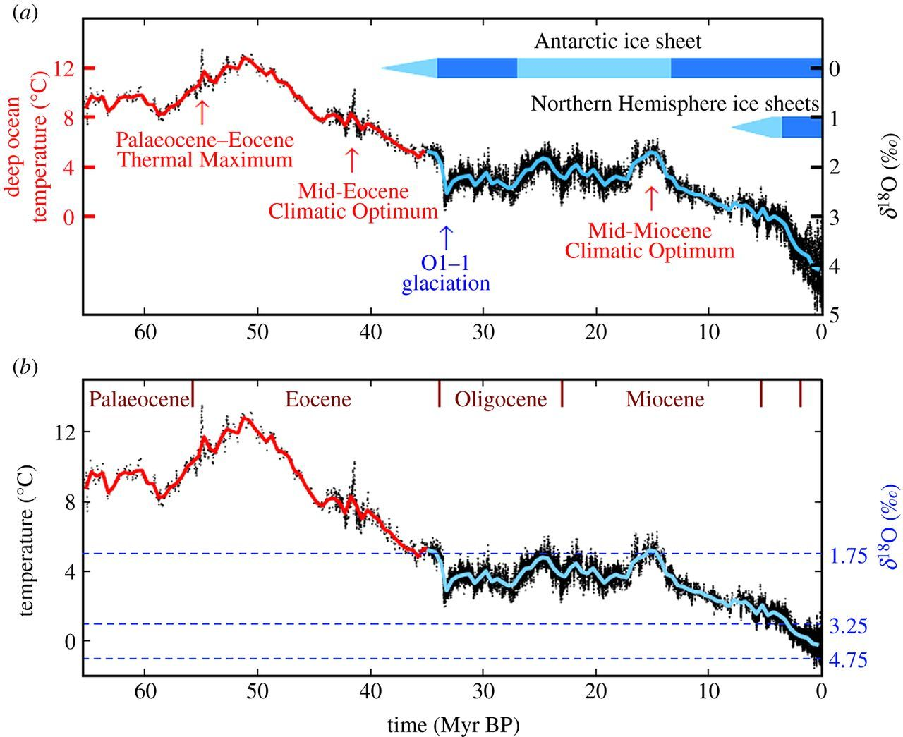 Thermal Maximum and Climatic Optimum in the Mid-Eocene and Mid-Miocene