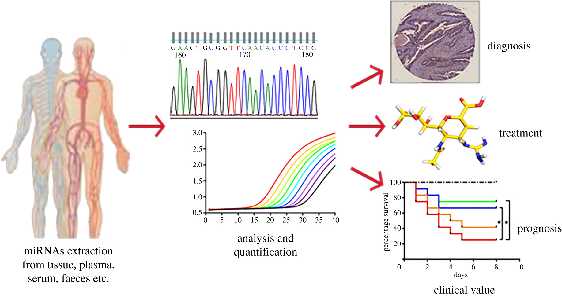 Emerging Microrna Biomarkers For Colorectal Cancer Diagnosis And Prognosis Open Biology