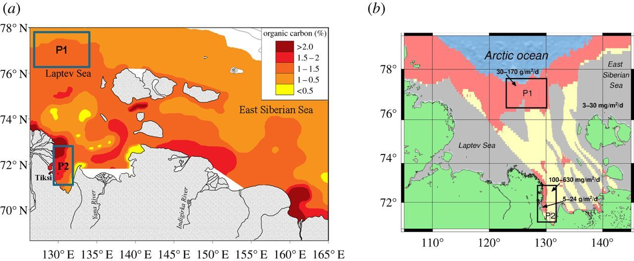 The East Siberian Arctic Shelf Towards Further Assessment Of