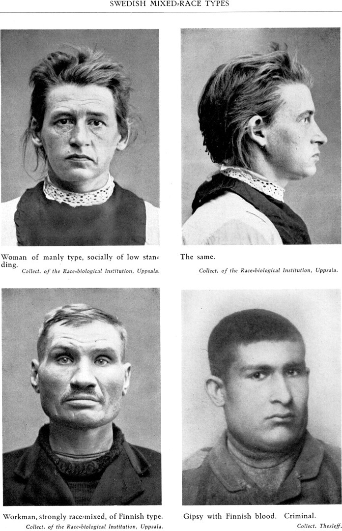Selling Eugenics The Case Of Sweden Notes And Records Of The