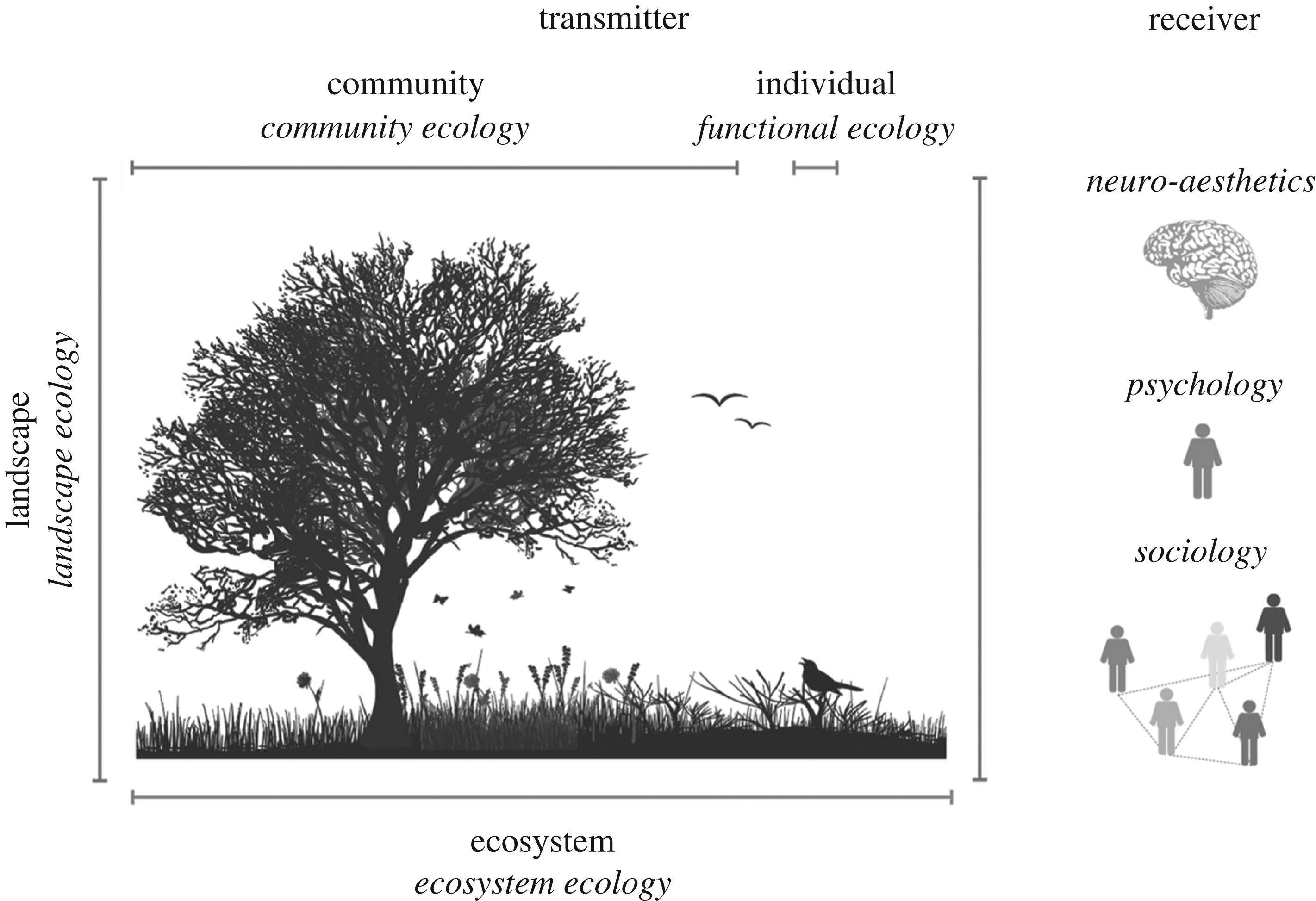 Integrating The Aesthetic Value Of Landscapes And Biological Diversity Proceedings Of The Royal Society B Biological Sciences