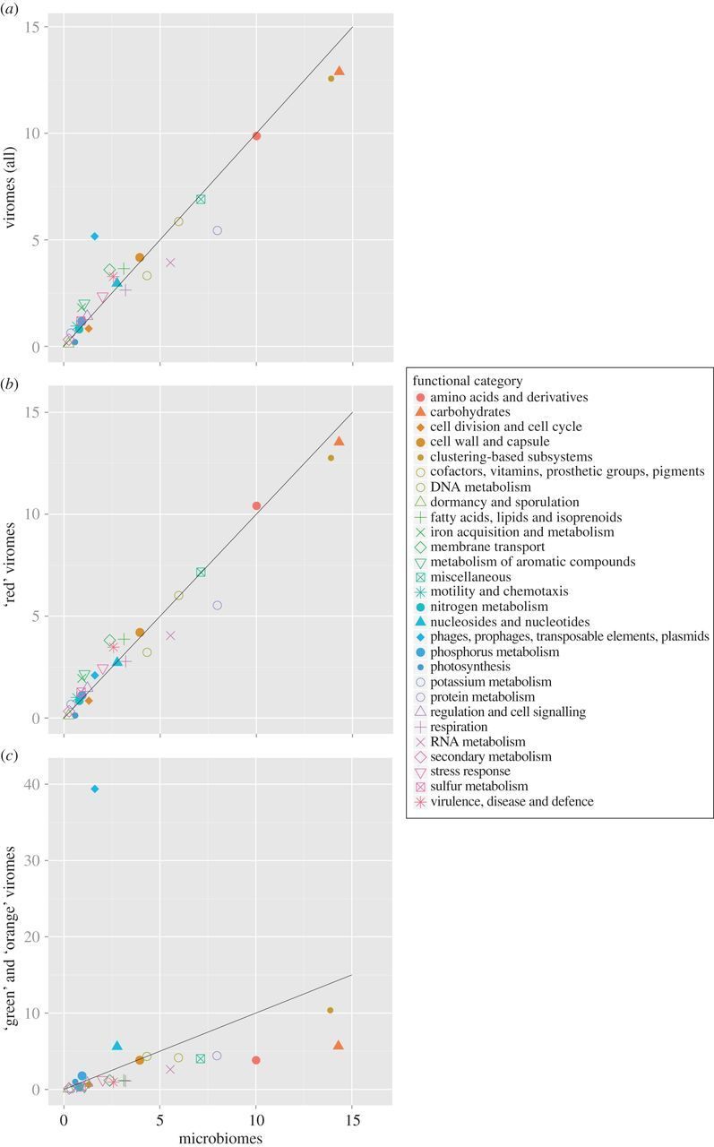 Assessment Of Viral Munity Functional Potential From