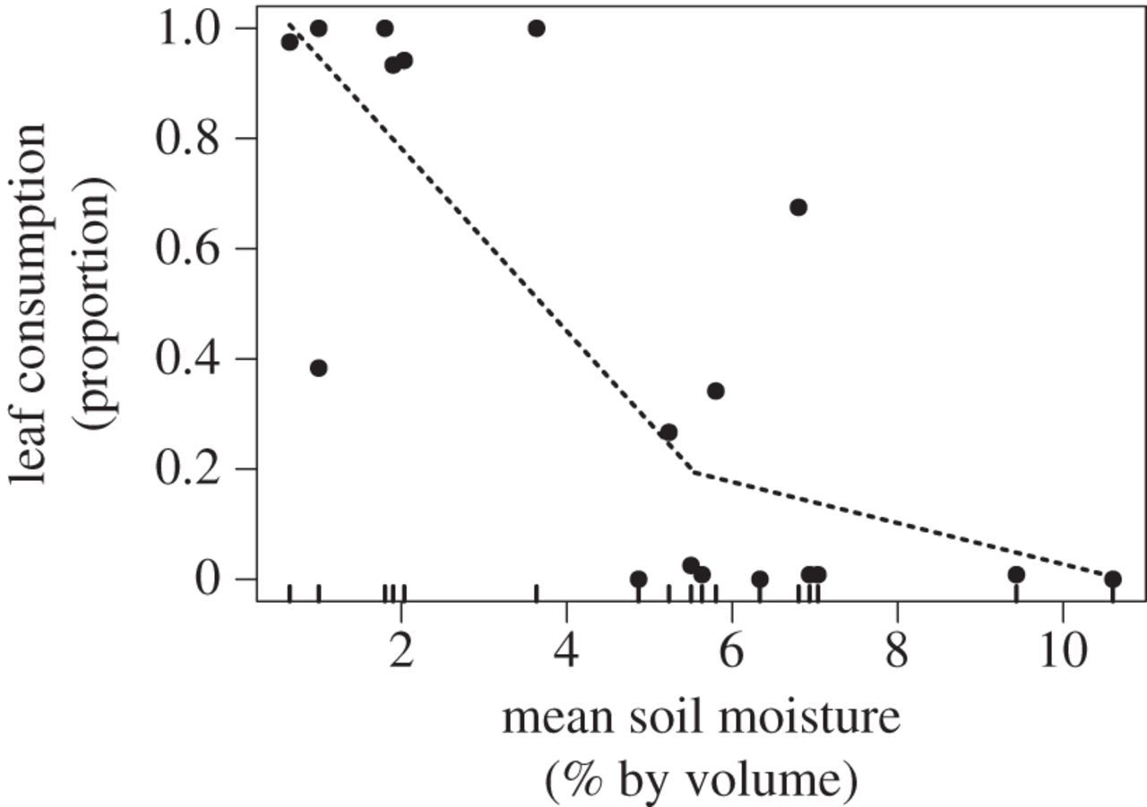 Animal water balance drives top-down effects in a riparian forest