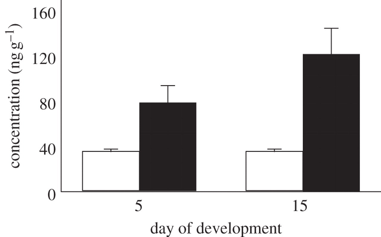 Biological activity of oestradiol sulphate in an oviparous
