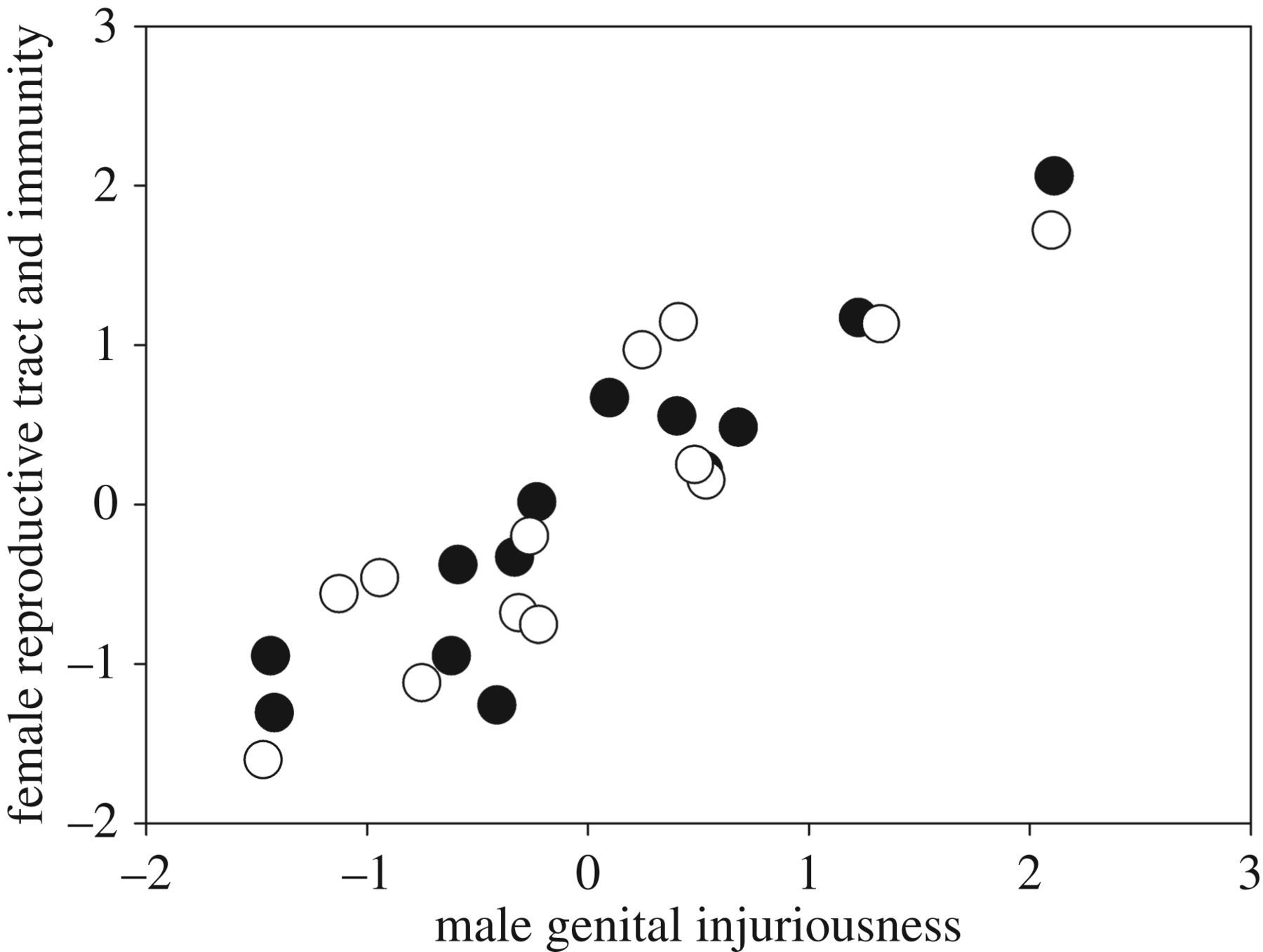 Sexual conflict and correlated evolution between male persistence