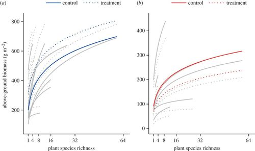 Plant diversity effects on grassland productivity are robust to both