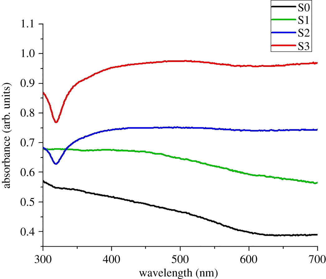 Synthesis and characterization of silver nanoparticle-decorated