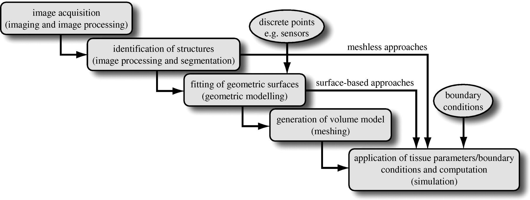 Subject-specific, multiscale simulation of electrophysiology: a