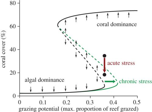 Synergistic impacts of global warming on the resilience of coral