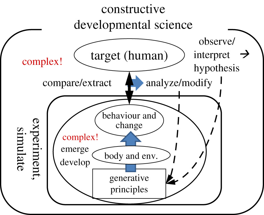 Fusing autonomy and sociality via embodied emergence and development