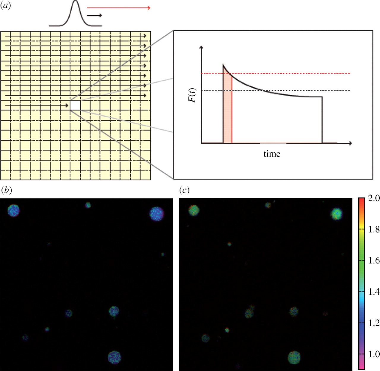 Fluorescence Based Transient State Monitoring For Biomolecular Topic Circuit A Few Milliseconds Time Delay Read 4035 Times Download Figure