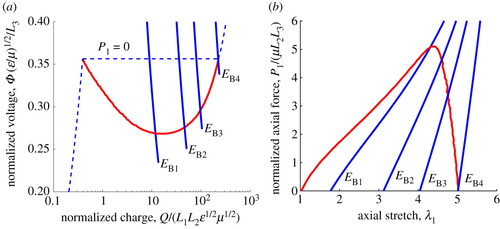 Electromechanical phase transition in dielectric elastomers