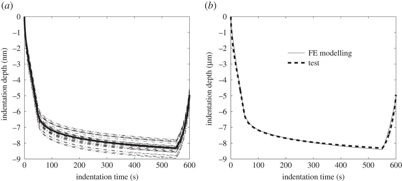 An inverse method for determining the spatially resolved