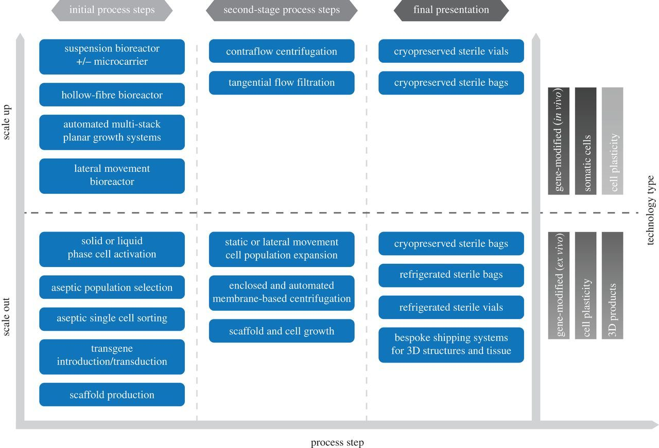 Cell-based therapy technology classifications and translational