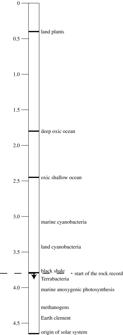 Evolutionary ecology during the rise of dioxygen in the