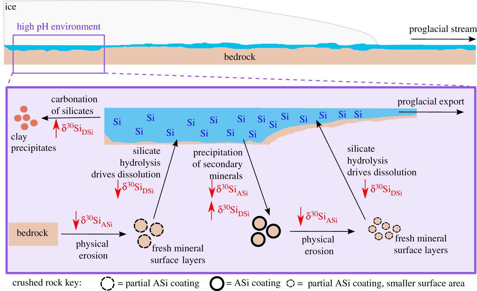Silicon isotopes in Arctic and sub-Arctic glacial meltwaters