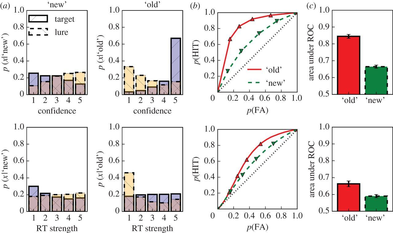 Assessing recognition memory using confidence ratings and
