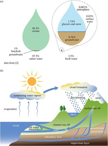 Bioinspired Materials For Water Supply And Management Water
