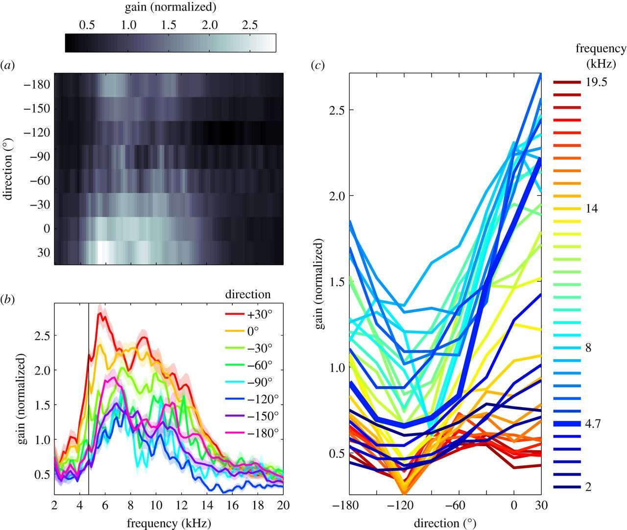 Frequency tuning and directional sensitivity of tympanal vibrations