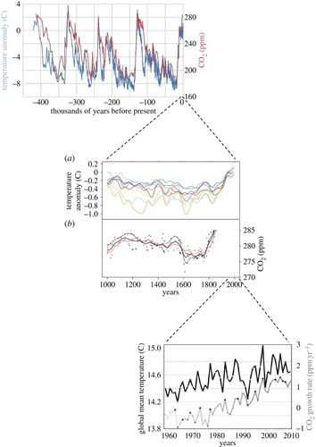 Carbon Sequestration and Its Role in the Global Carbon Cycle: 183 (Geophysical Monograph Series)
