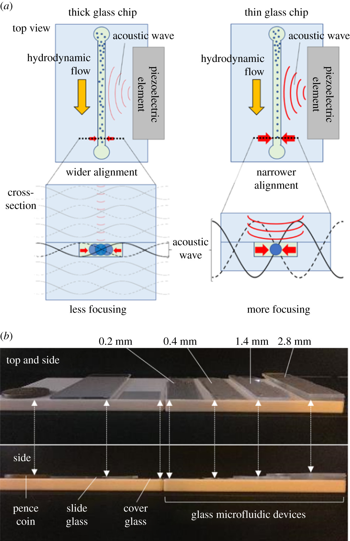 Enhancement in acoustic focusing of micro and nanoparticles