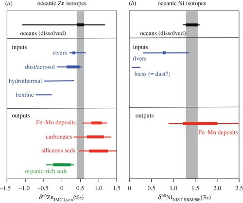 The oceanic budgets of nickel and zinc isotopes: the