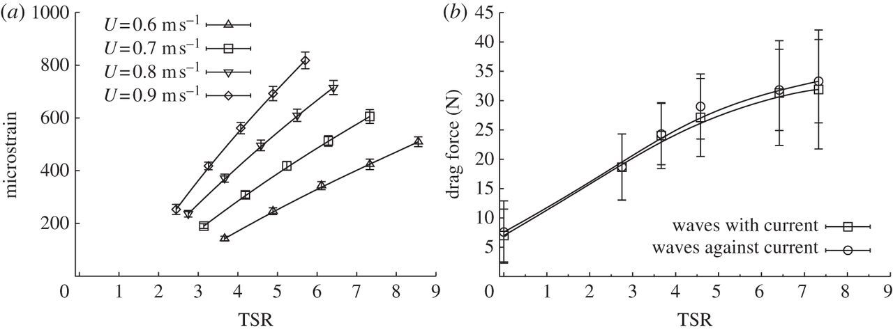 Evaluation of the durability of composite tidal turbine