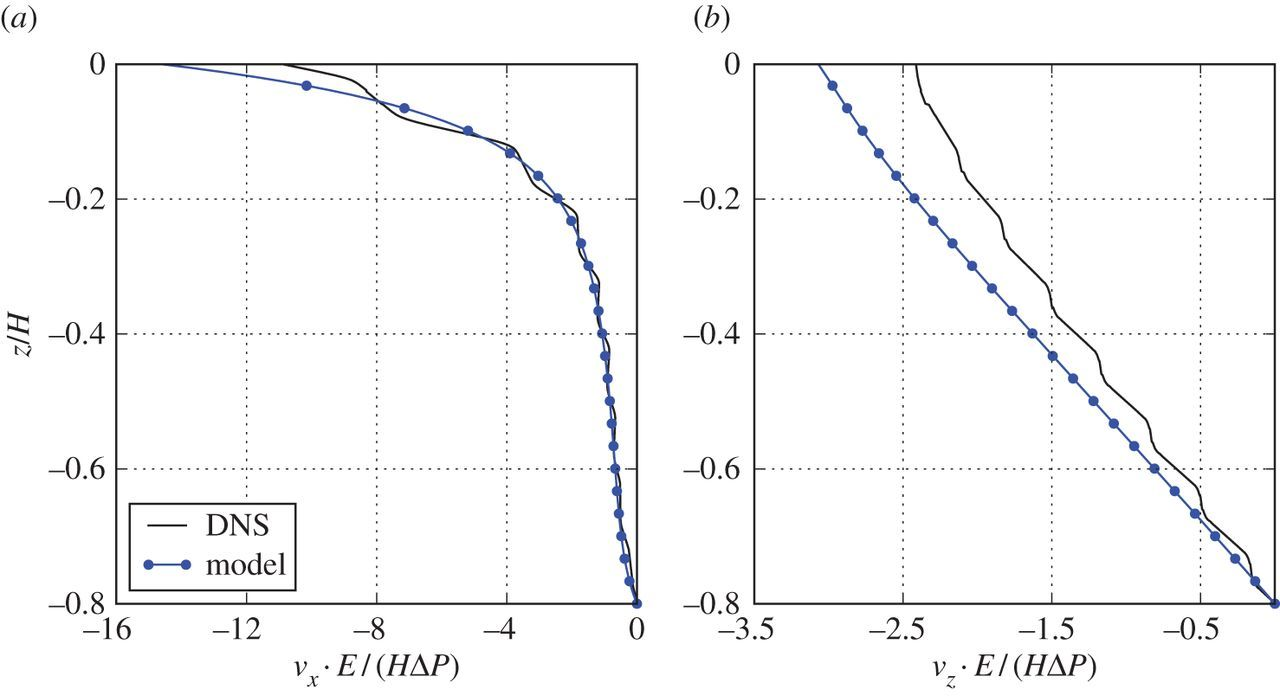 A computational continuum model of poroelastic beds | Proceedings of