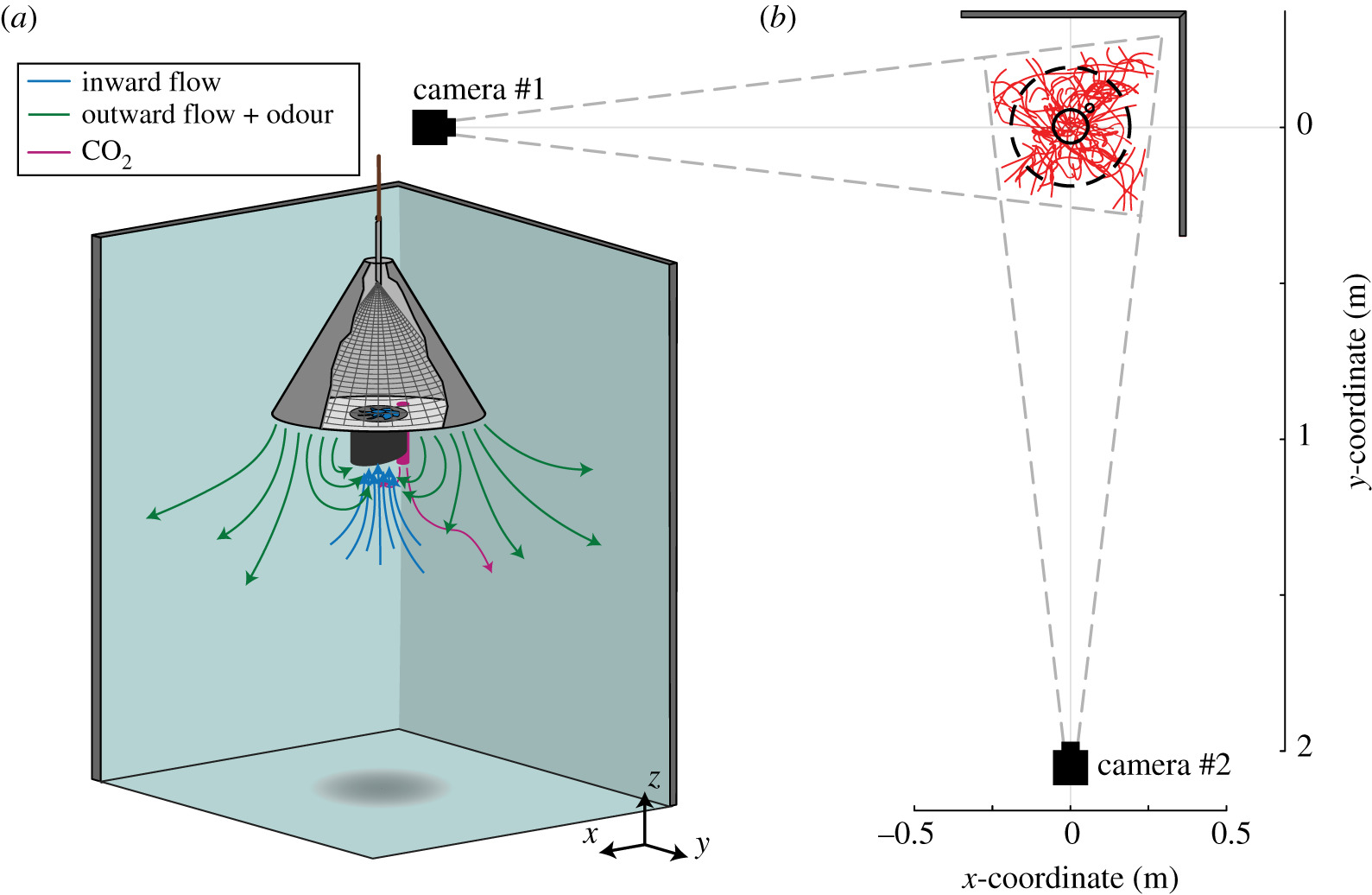 Flight behaviour of malaria mosquitoes around odour-baited traps