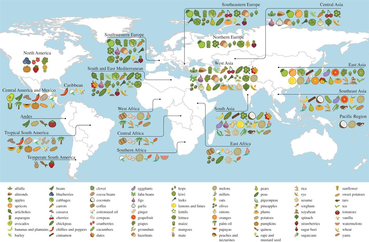 Origins of food crops connect countries worldwide | Proceedings of