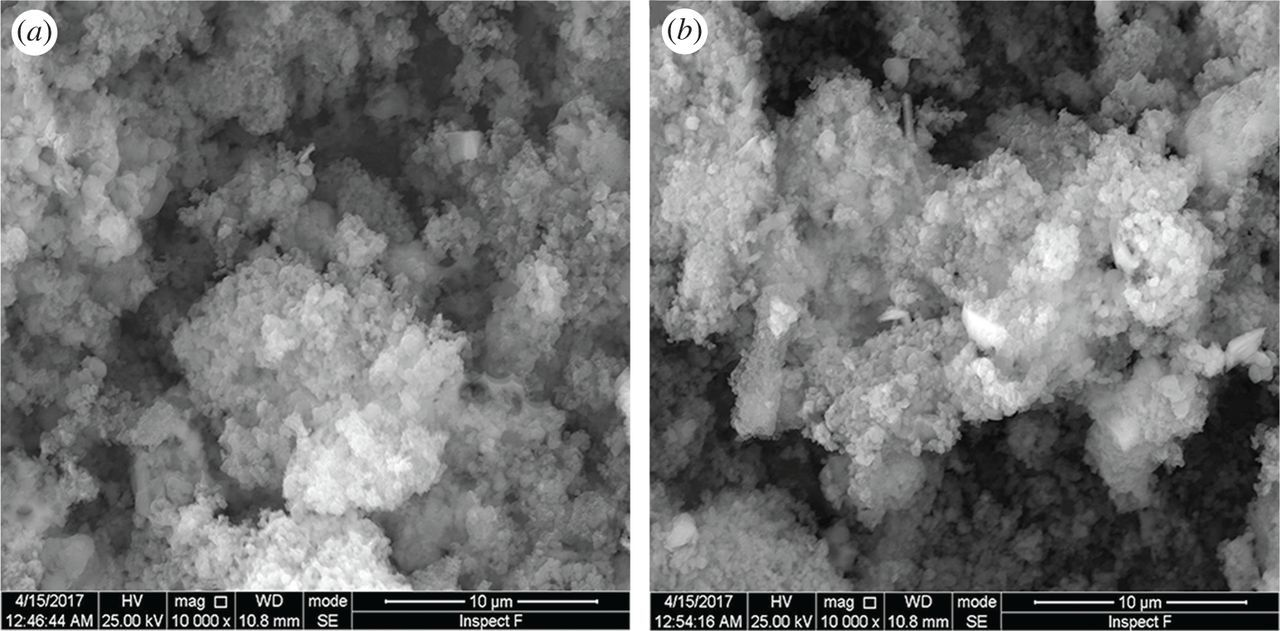 Preparation of chitosan/MCM-41-PAA nanocomposites and the adsorption