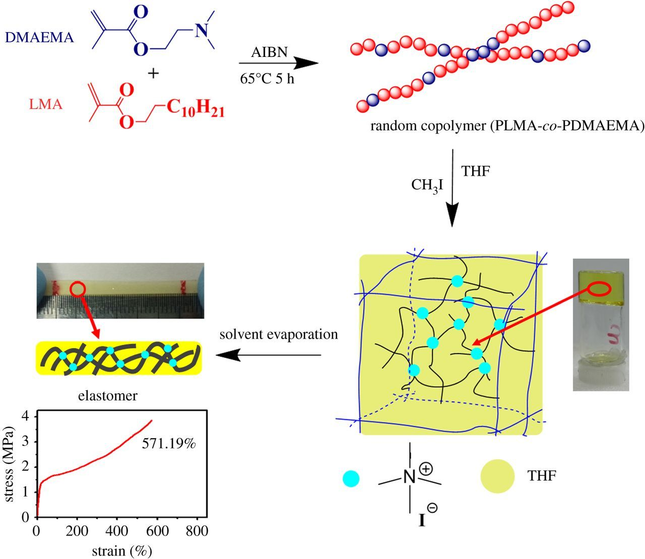 Fast formation of a supramolecular ion gel/solvoplastic elastomer