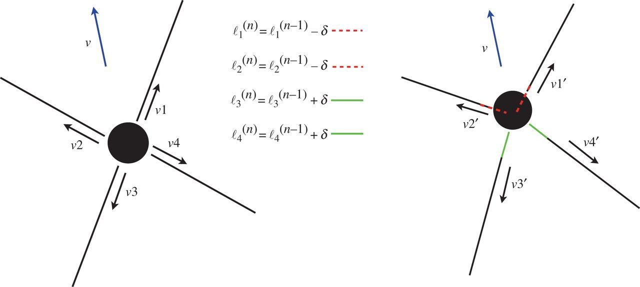 design and control of compliant tensegrity robots through