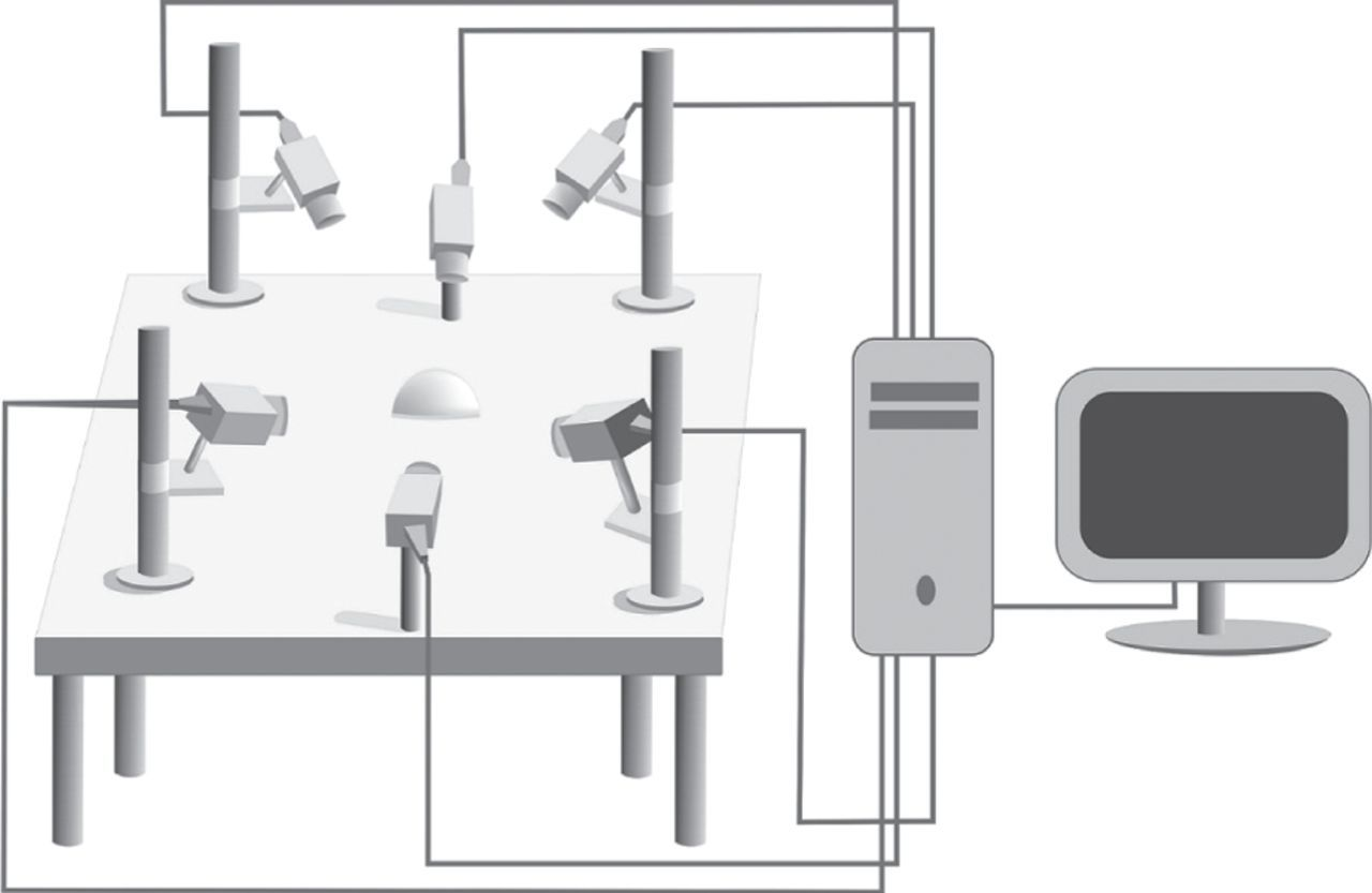 Three-dimensional tracking and behaviour monitoring of