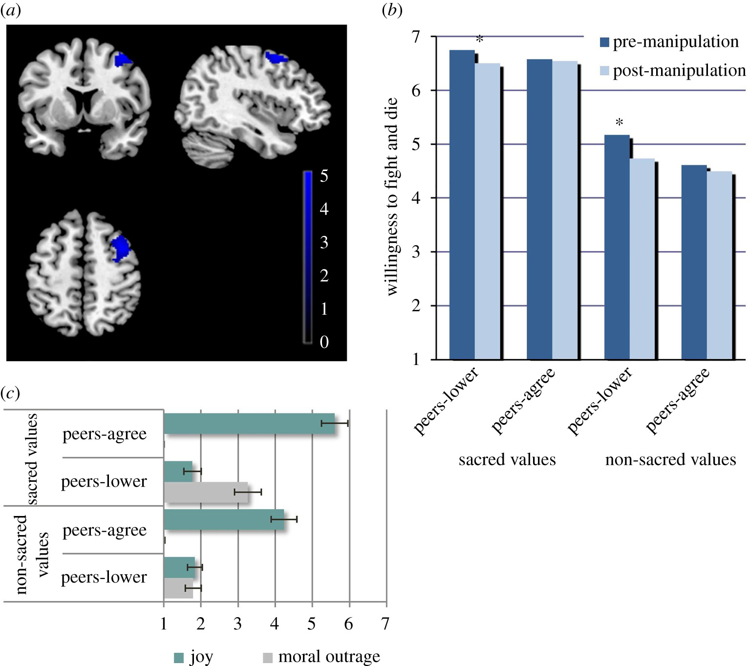 Neuroimaging 'will to fight' for sacred values: an empirical
