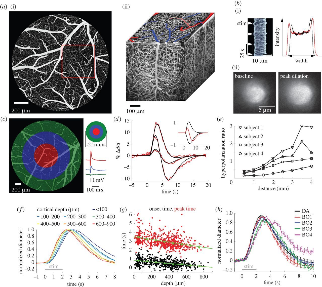 The roadmap for estimation of cell-type-specific neuronal activity