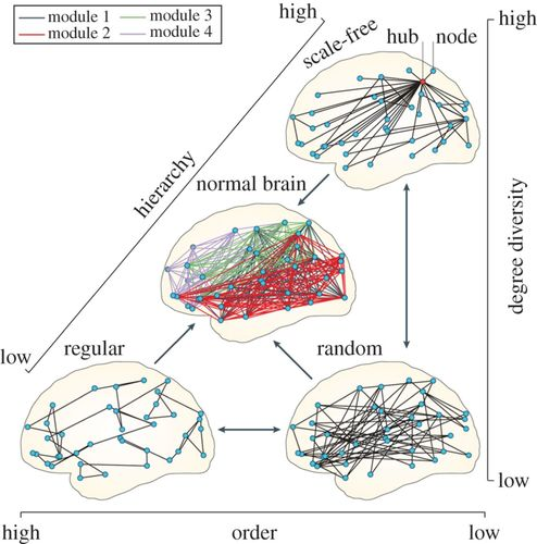 Scale Invariance In Natural And Artificial Collective