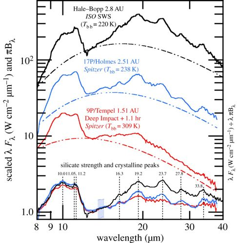 Cometary dust: the diversity of primitive refractory grains