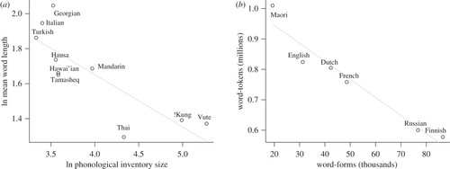 Social scale and structural complexity in human languages
