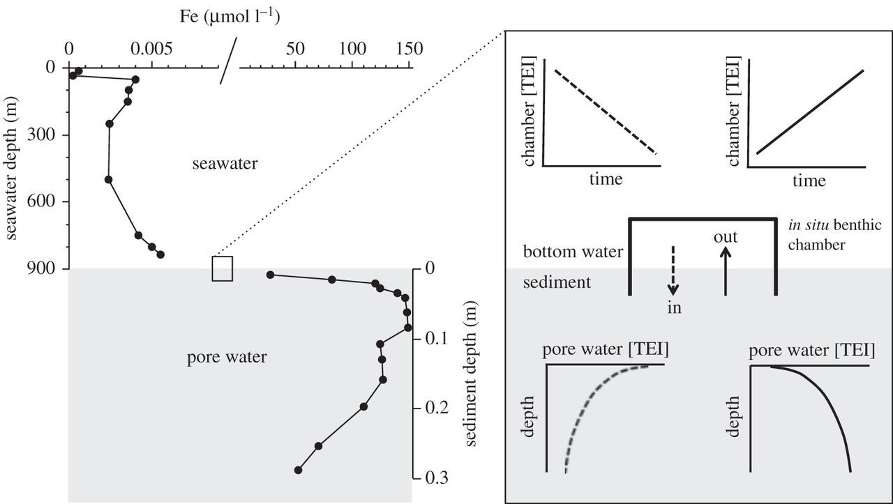 Quantifying Trace Element And Isotope Fluxes At The Oceansediment Fig Schematic Diagram Of A Ballmill Sourcearmstrong Download Figure