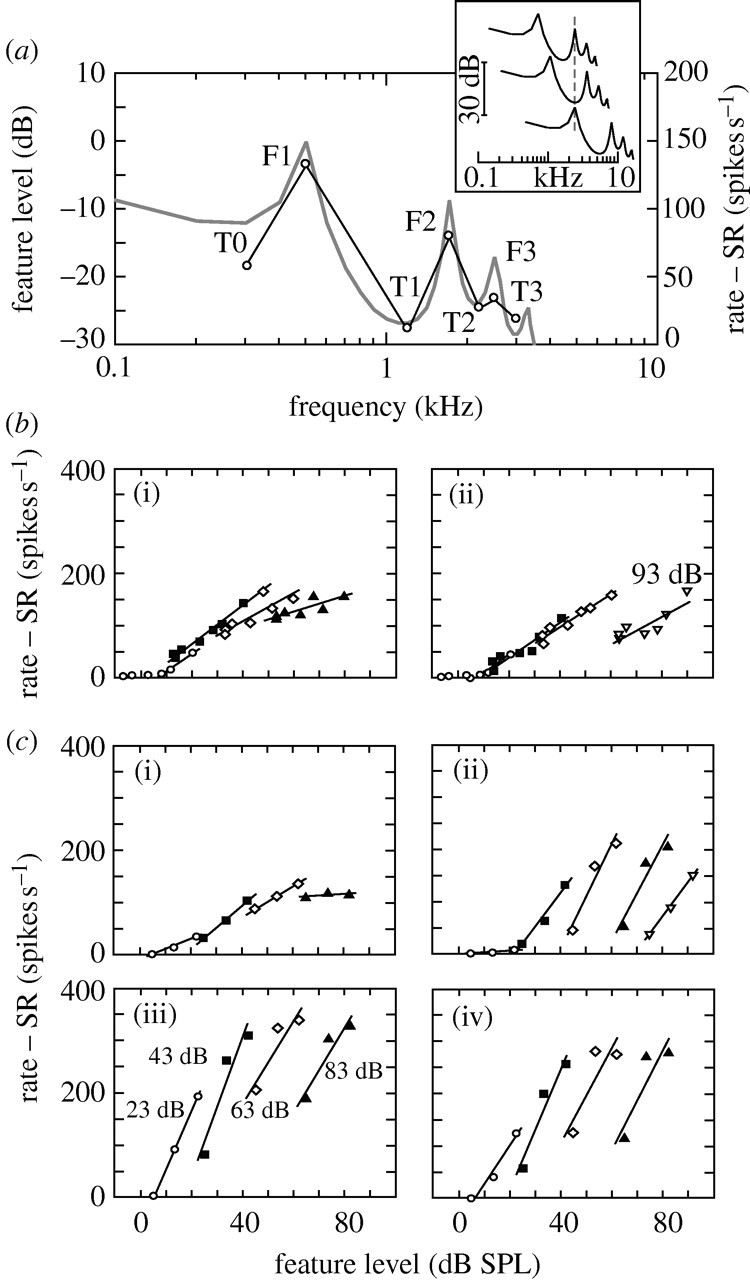 Neural Representation Of Spectral And Temporal Information In Speech Design A D Converter With The Following Required Characteristics Download Figure