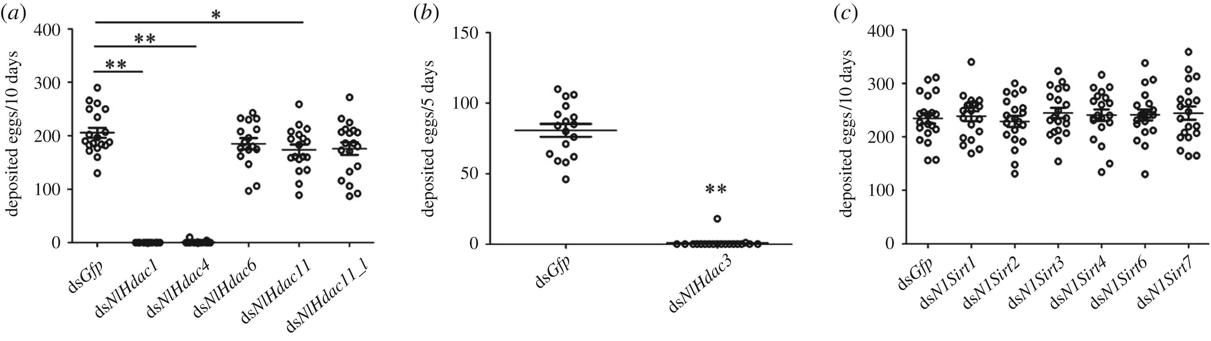 The histone deacetylase NlHDAC1 regulates both female and male