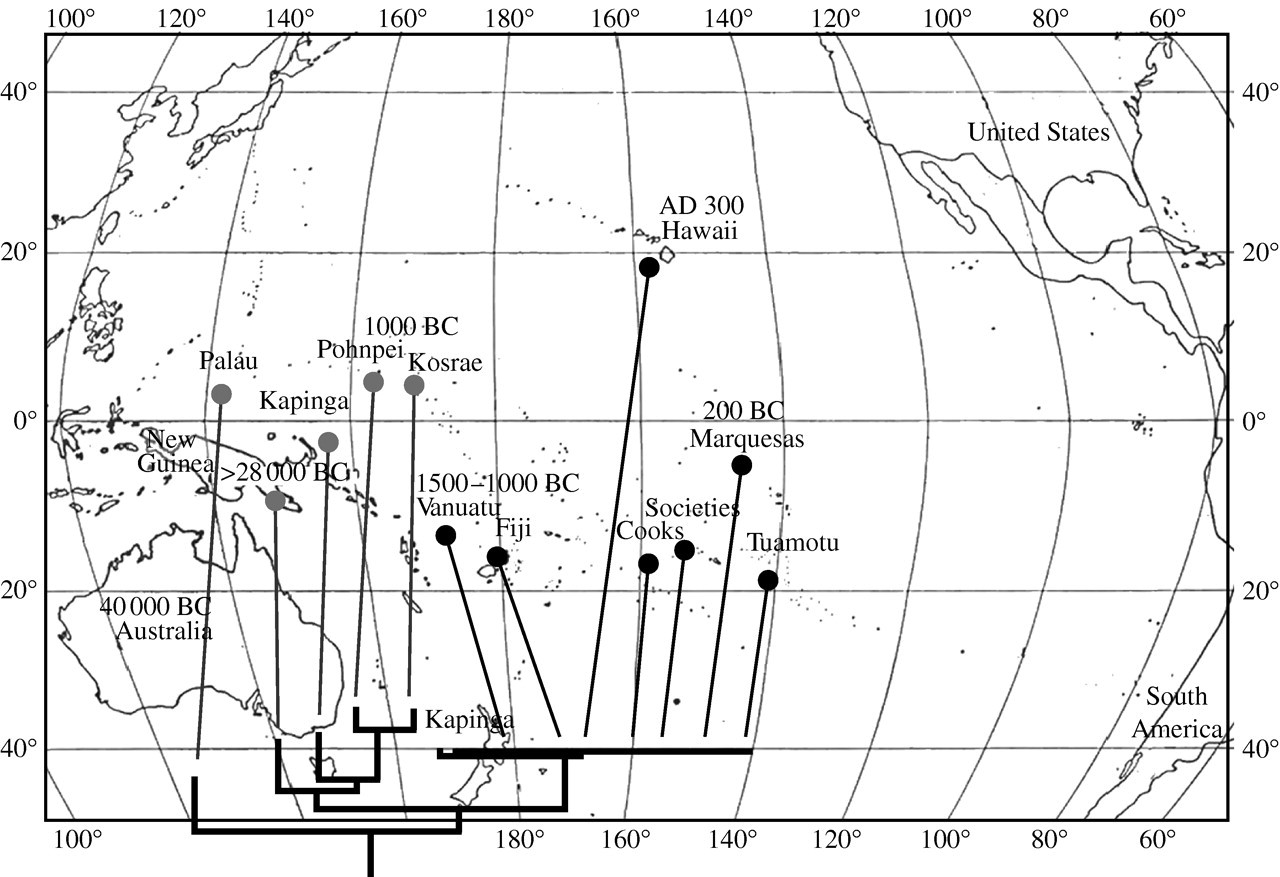 7345c95cf Biogeography of the fauna of French Polynesia: diversification ...