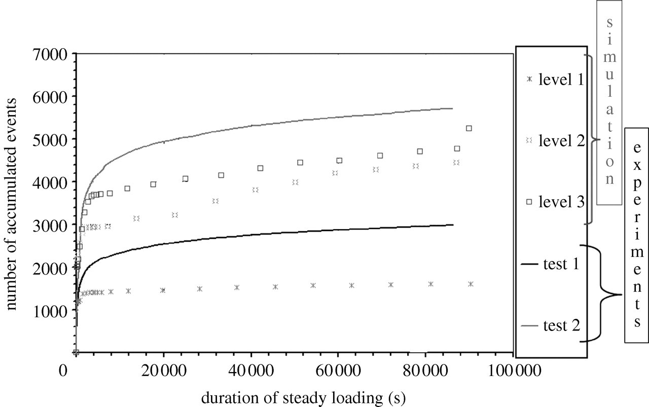 Damage accumulation processes and life prediction in unidirectional