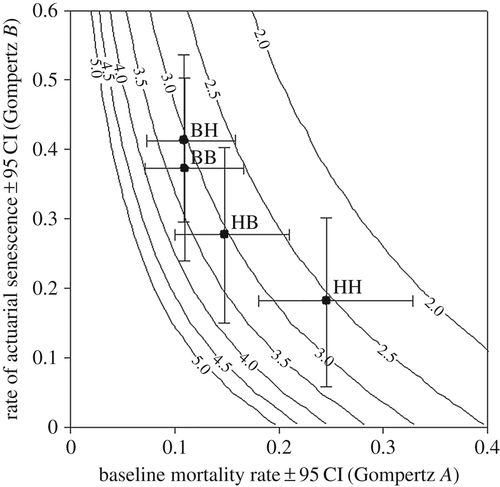 Food Availability Affects Adult Survival Trajectories Depending On