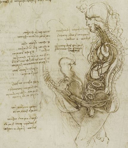 Of Leonardo da Vinci at Southbank Centre – 4 September