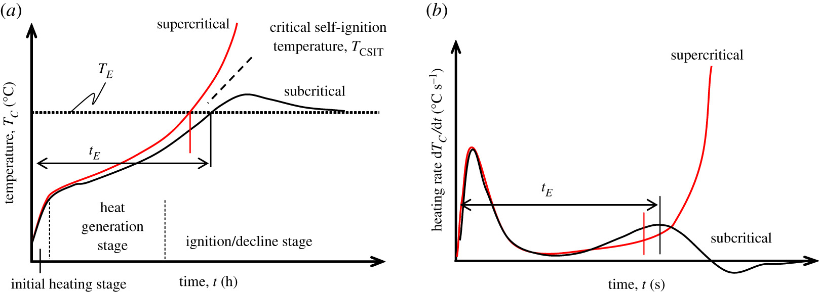 Effects of temperature gradient and particle size on self