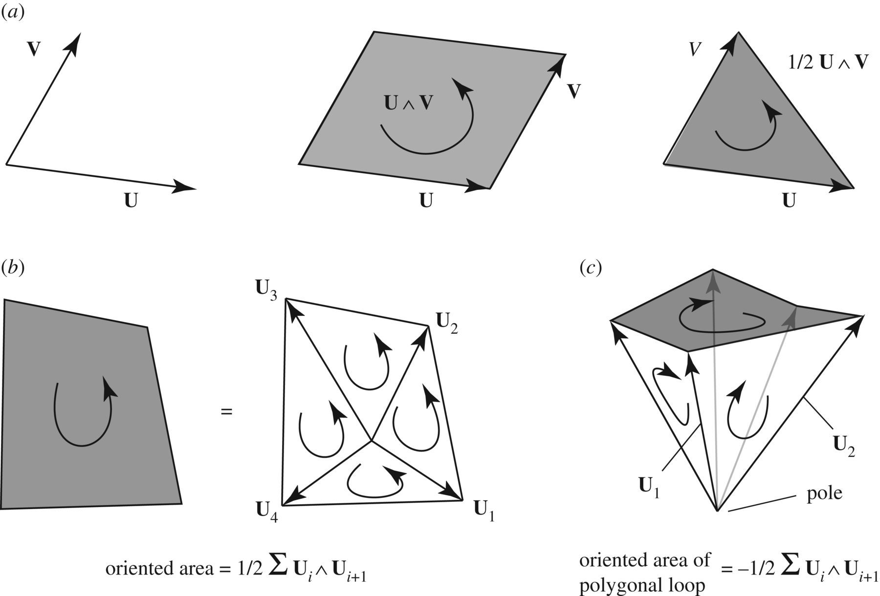 The geometry of structural equilibrium | Royal Society Open Science