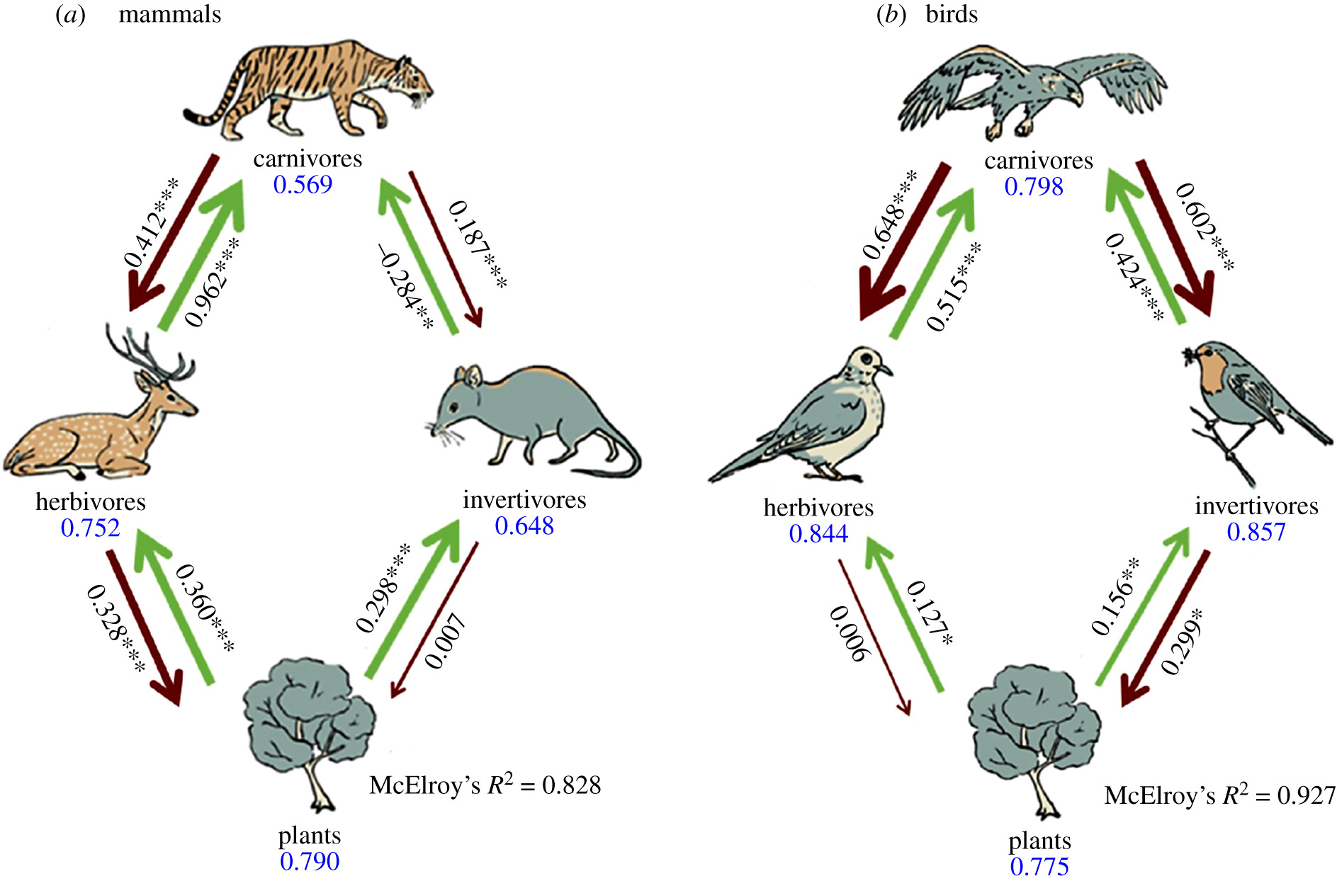 Trophic interactions among vertebrate guilds and plants