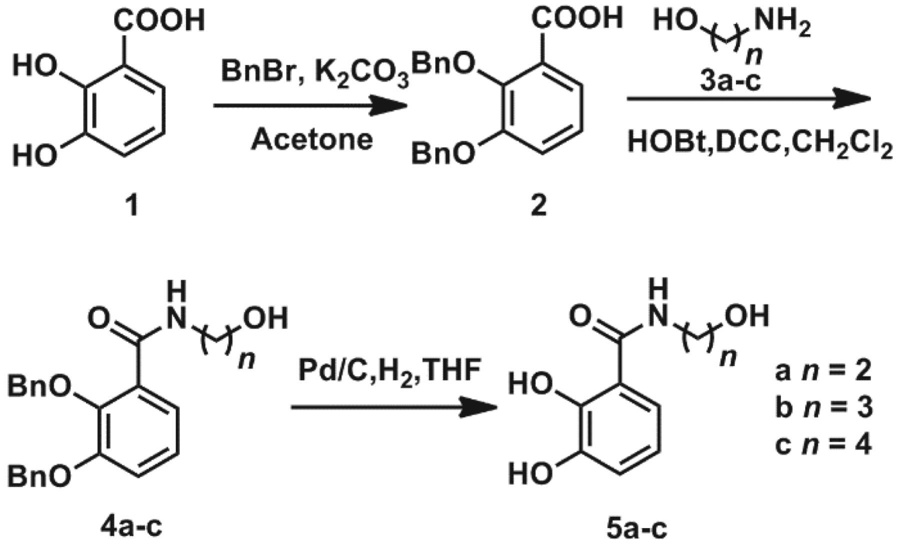 The mono(catecholamine) derivatives as iron chelators: synthesis